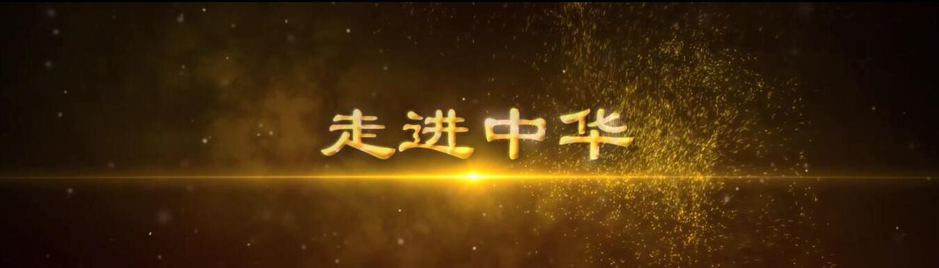 中华保险客户推介宣传片