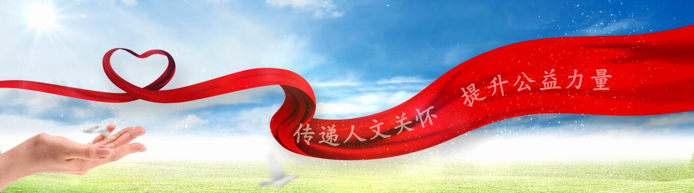 中华保险公益形象